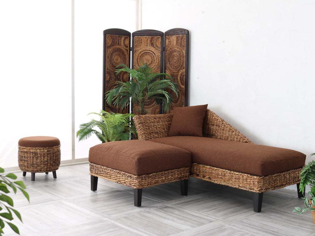 バナナリーフ家具のある部屋